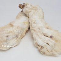Kaninchen-Hinterläufe mit Fell, 5 Stück